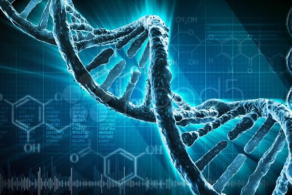 Группа ученых из МГУ научилась «ремонтировать» ДНК